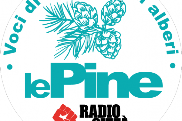 Le Pine